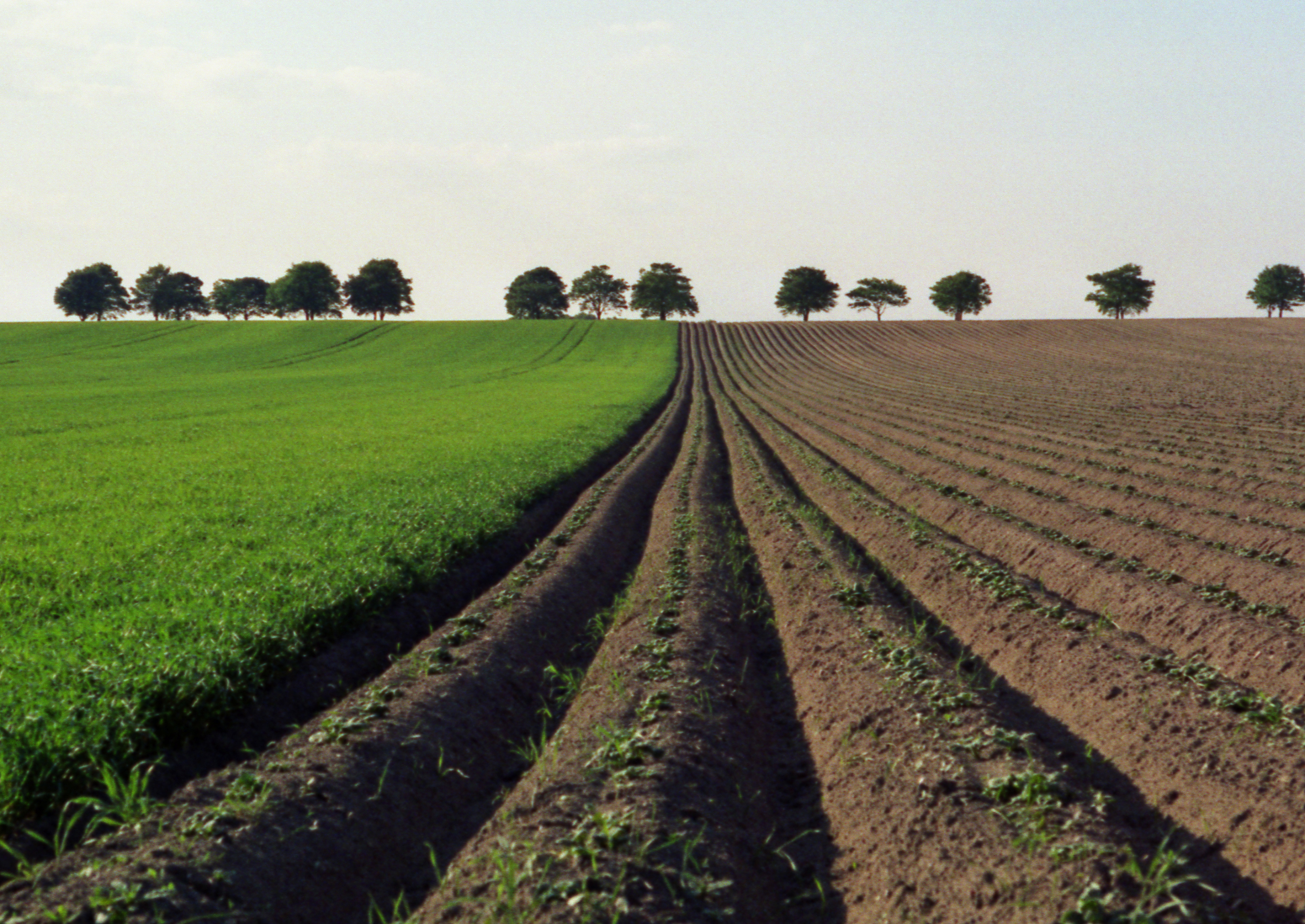 Wie Boden Vor Hochwasser Schutzt Umweltbundesamt