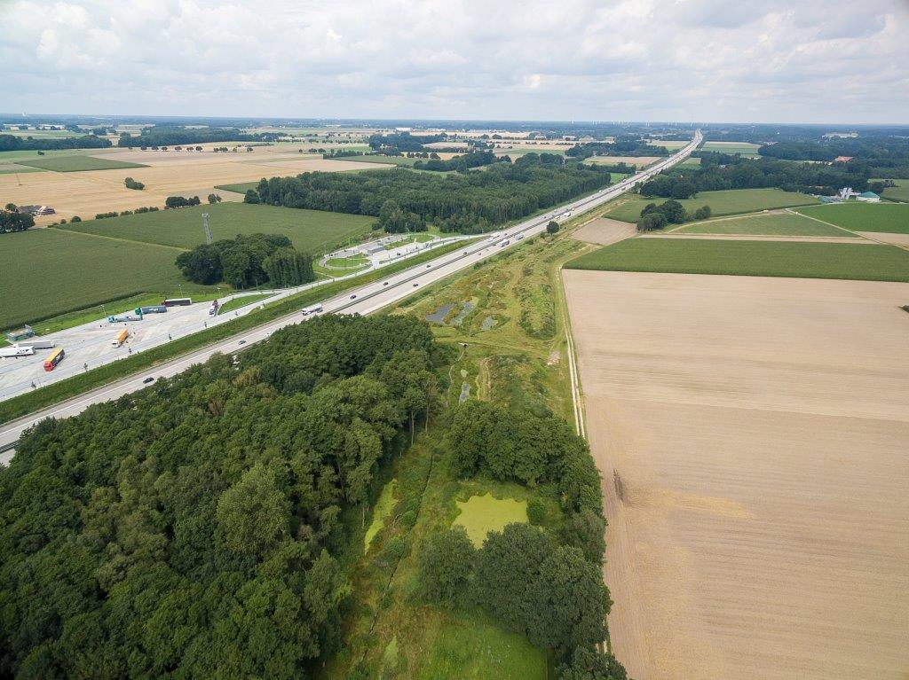 Luftbild des renaturierten Schierenbaches zwischen der Autobahn A1 und landwirtschaftlichen Flächen.