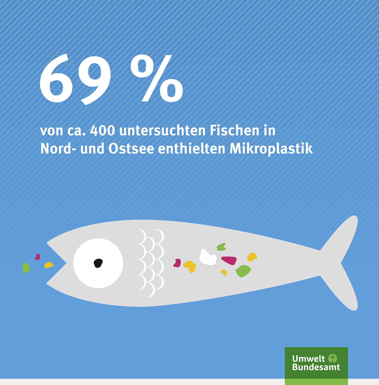Plastik in Fischen