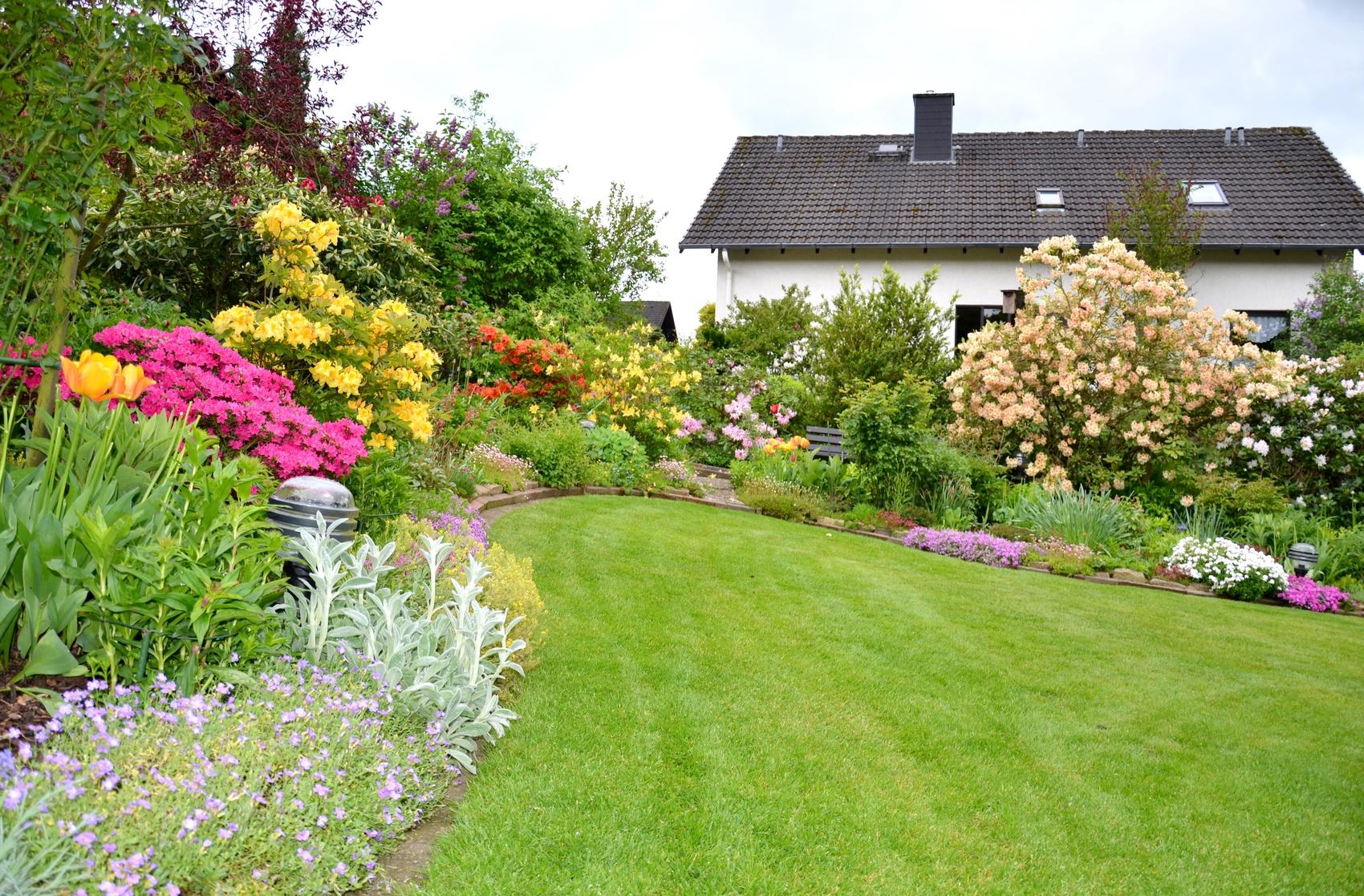 Ganz Schön Und Umweltfreundlich Tipps Für Gesunde Zierpflanzen