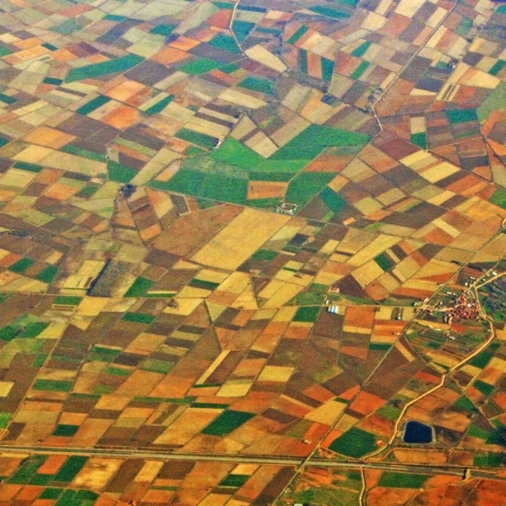 Poll Besteuerung Russisch Landwirtschaft