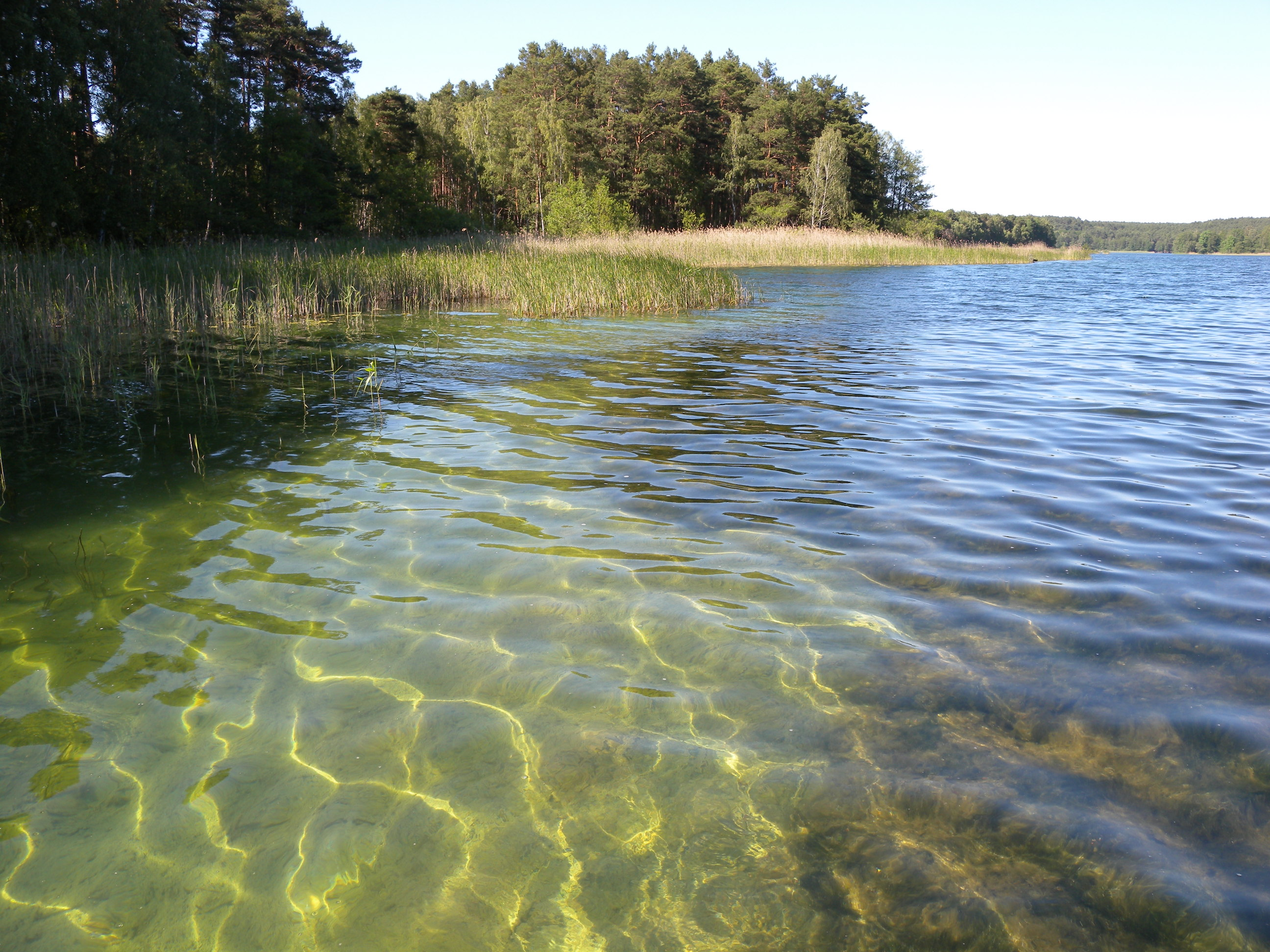 Top marks for northern Germany's lakes | Umweltbundesamt