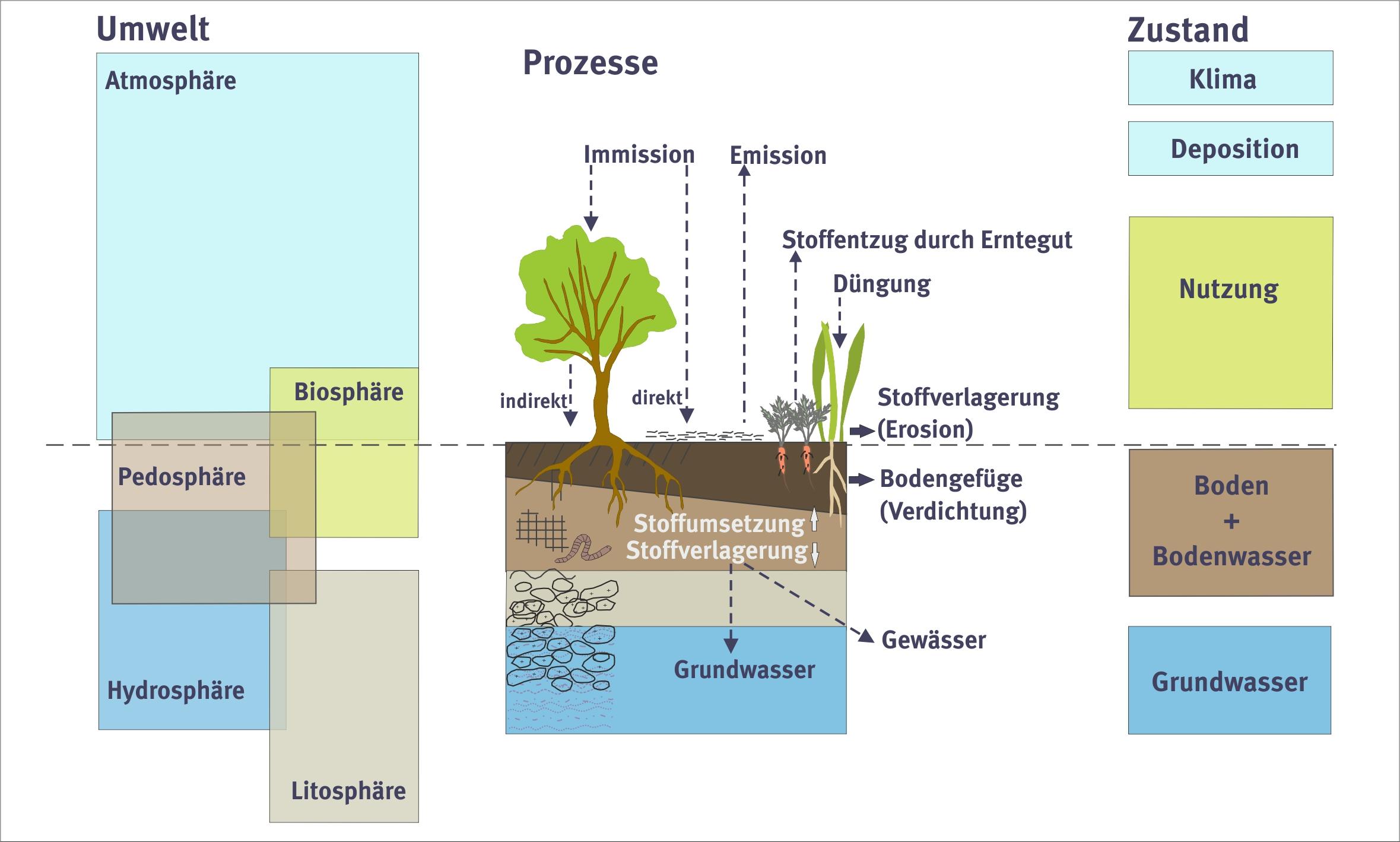 Soil observation and assessment | Umweltbundesamt