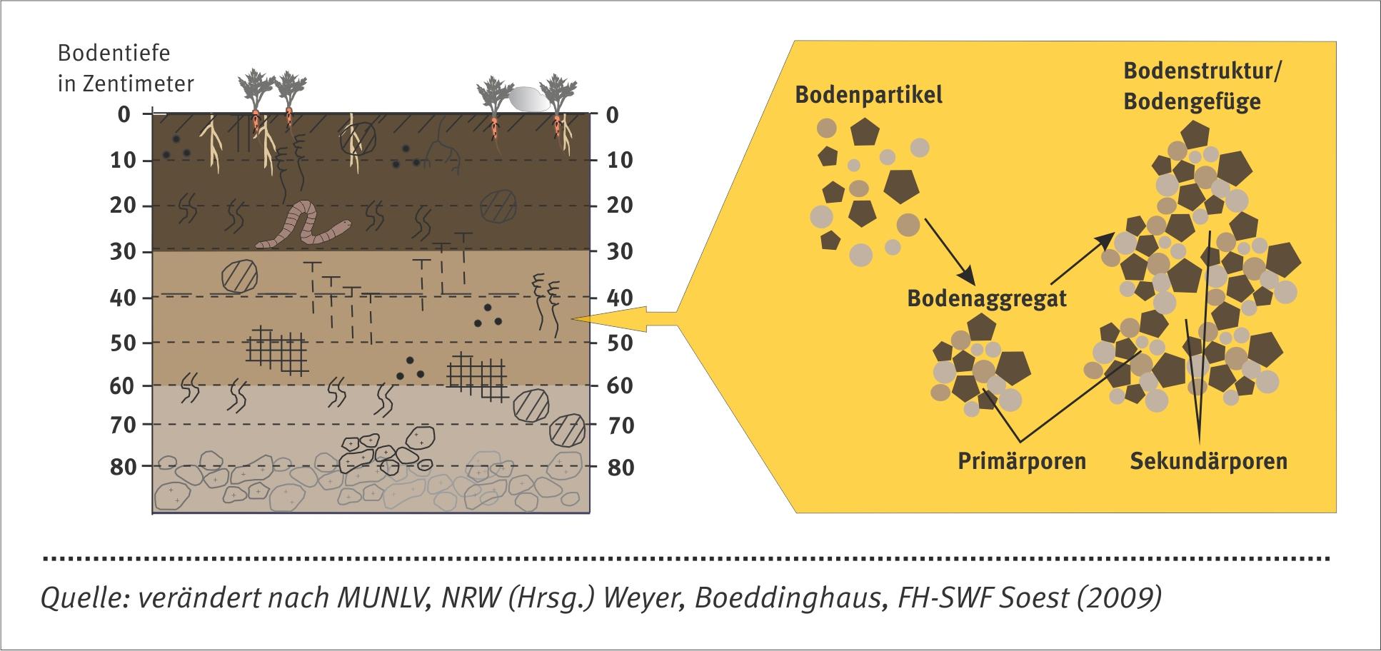 Schaubild zum strukturellen Bodenzuzstand.