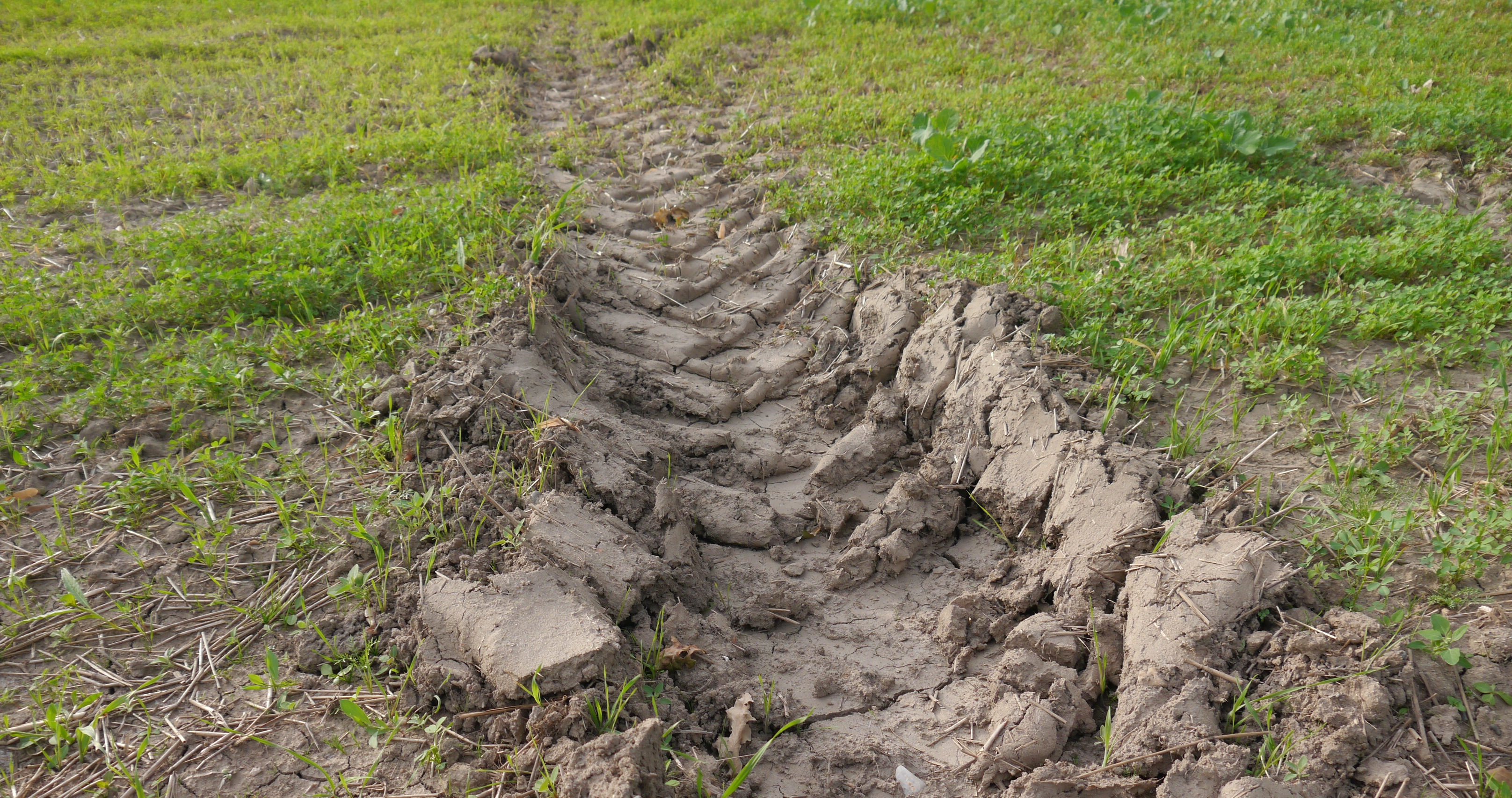 Soil compaction umweltbundesamt for Boden bilder
