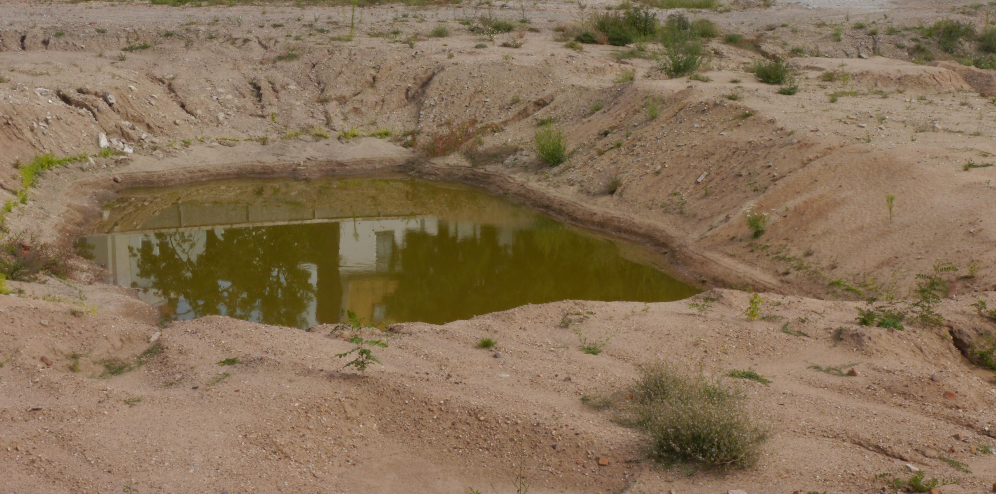 Bodenfunktionen umweltbundesamt for Artikel von boden