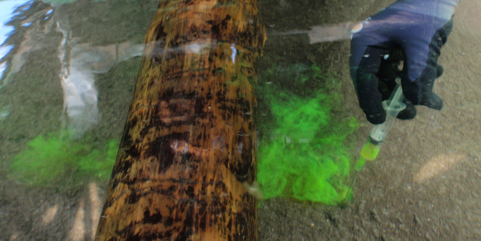 eine mit einem Gummihandschuh bekleidete Hand spritzt mit einer Spritze eine grüne Flüssigkeit in eine mit Wasser und Sand gefüllte Fließrinne