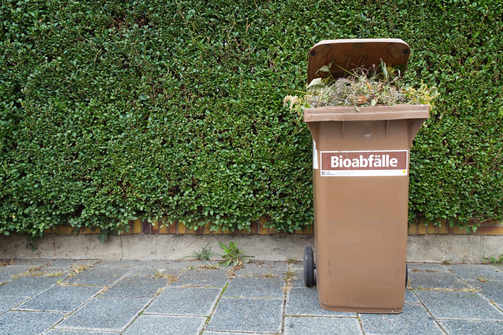 Biomüll Im Sommer Küche : Aufkleber biomüll mÜlltrennung mÜlleimer mÜlltonne