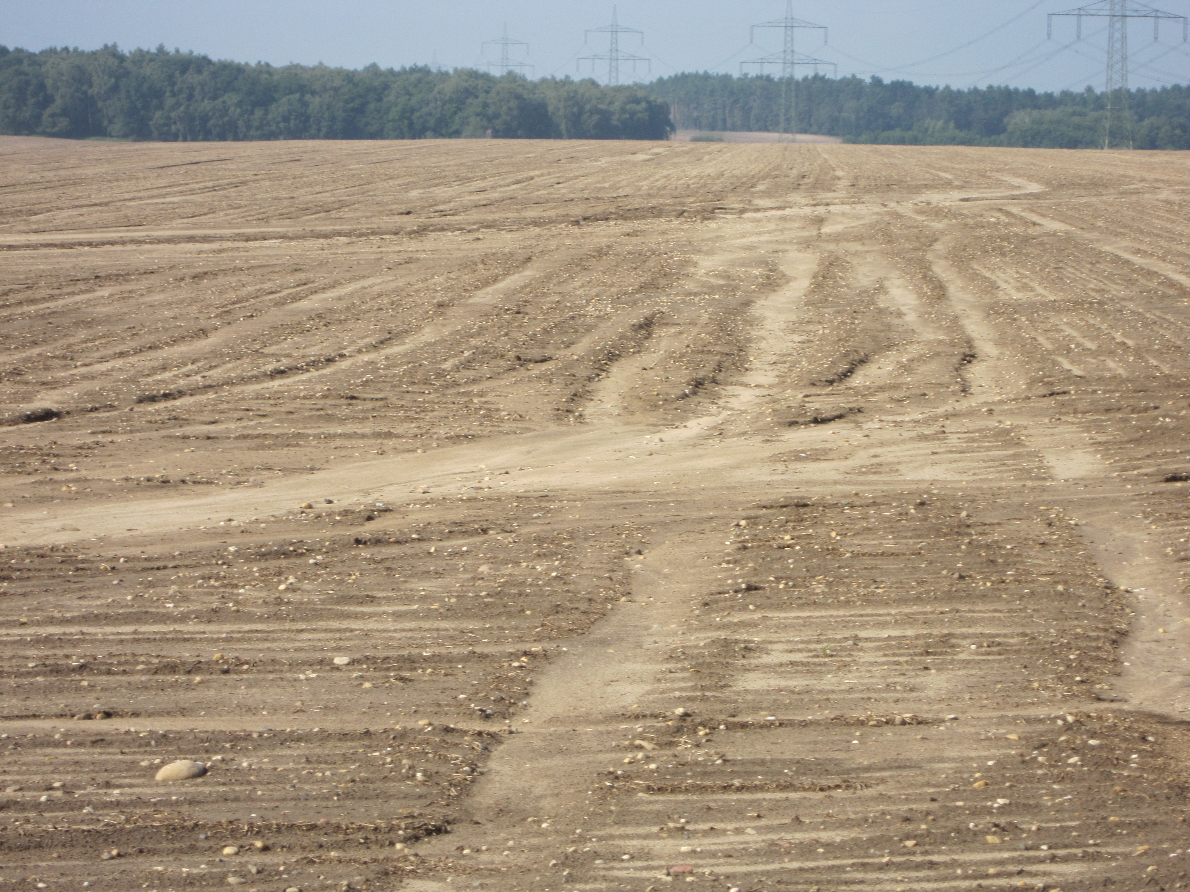 processes of soil erosion Wind erosion is caused by a strong, turbulent wind blowing across an  unprotected soil surface that is smooth, bare, loose.