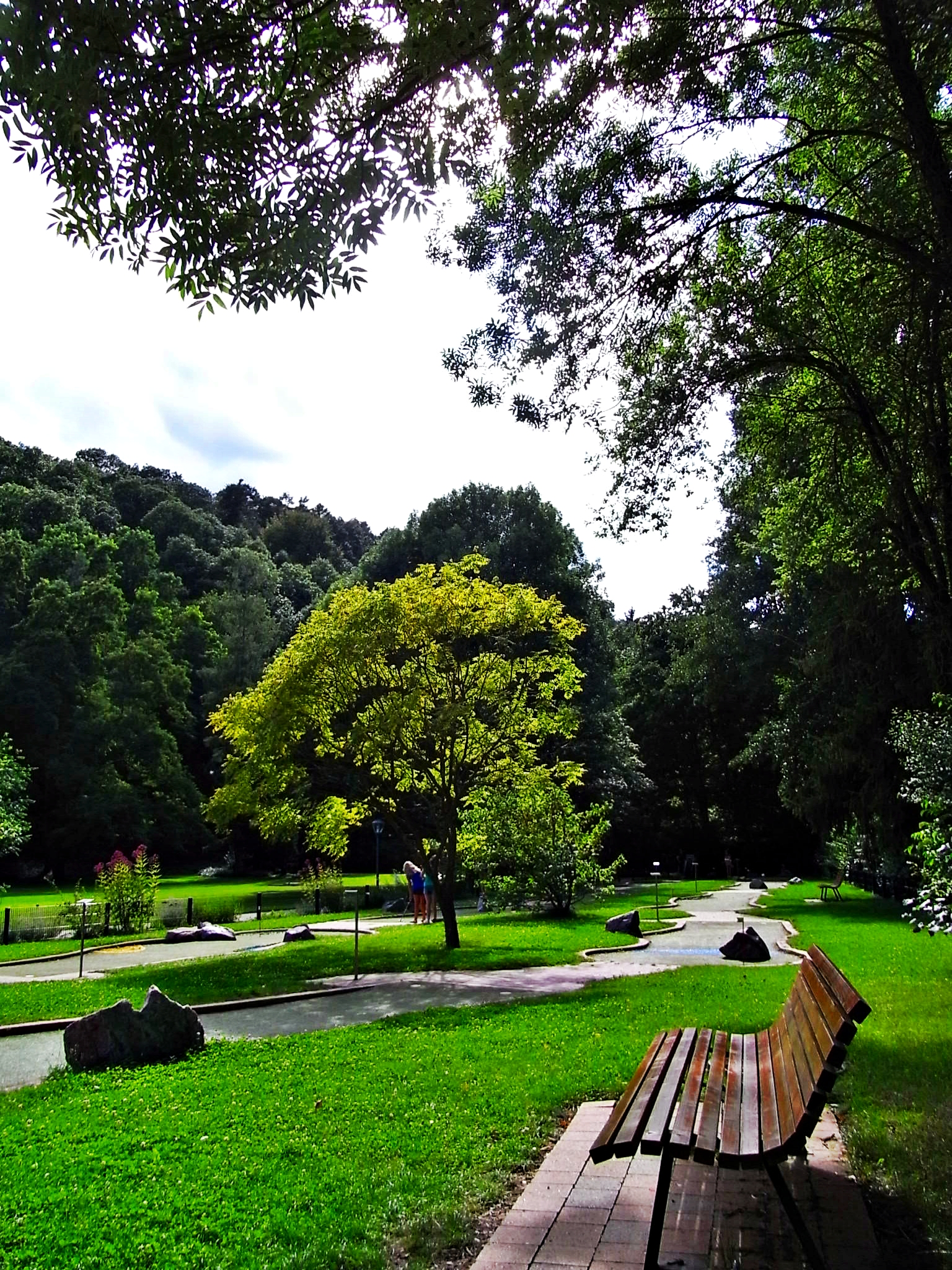 Parklandschaft mit Bank.