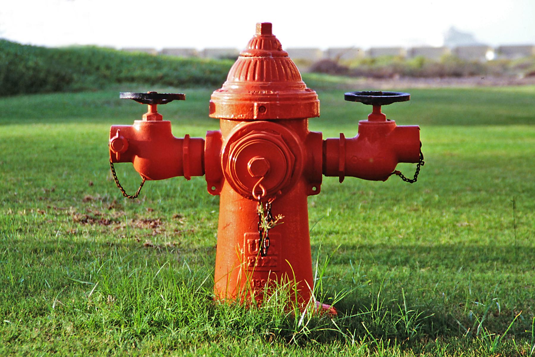 Roter Hydrant in grüner Landschaft.