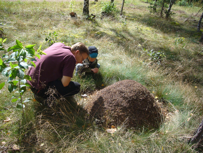 Boden erleben und lernen umweltbundesamt for Boden bilder