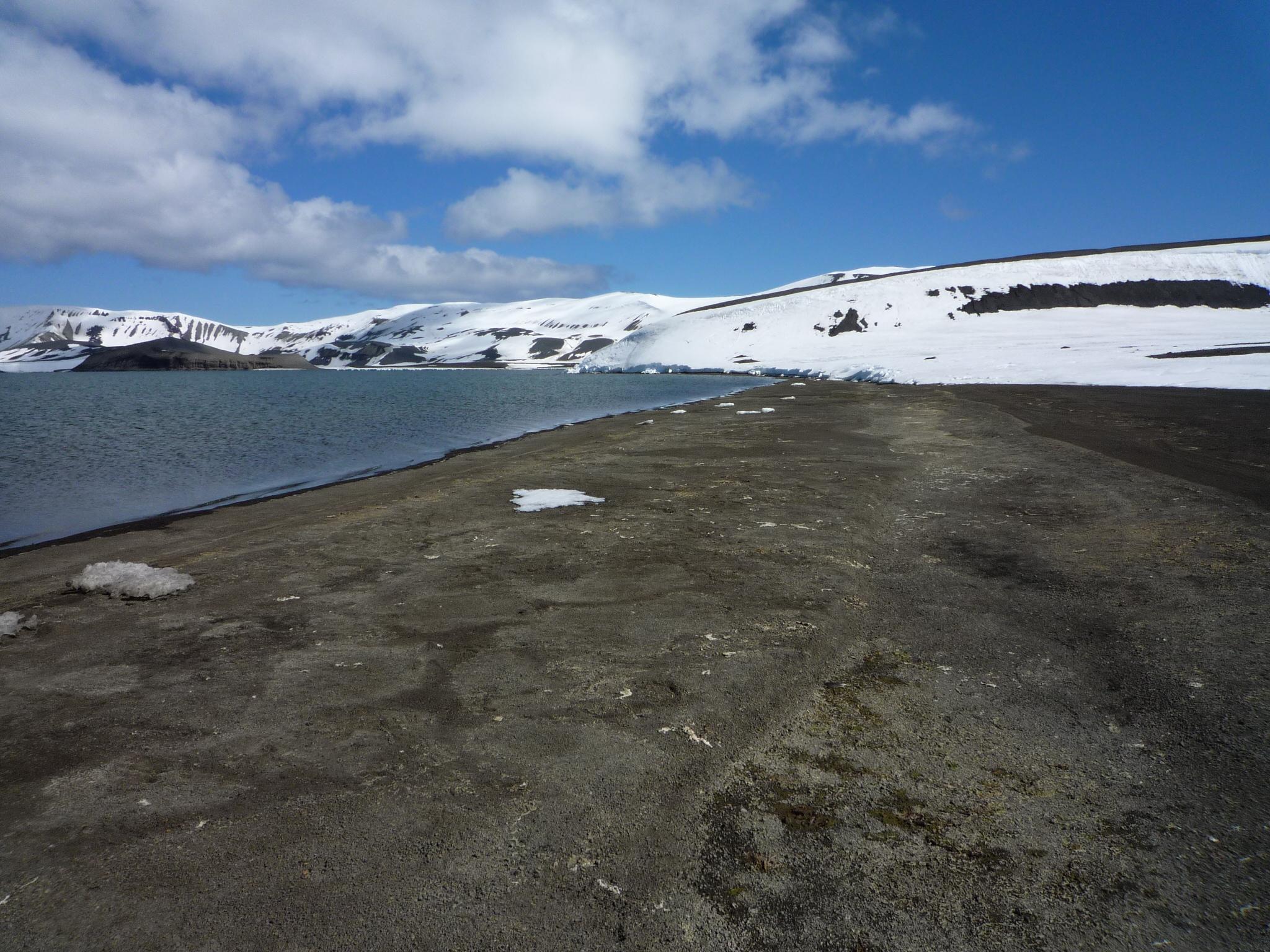 Zu sehen ist die Küste der Antarktis. Das Meer ist ruhig, der Himmel ist blau. Entlang der Küste erheben sich ein paar kleiner Hügel. Schnee und Eis sind zurückgegangen.