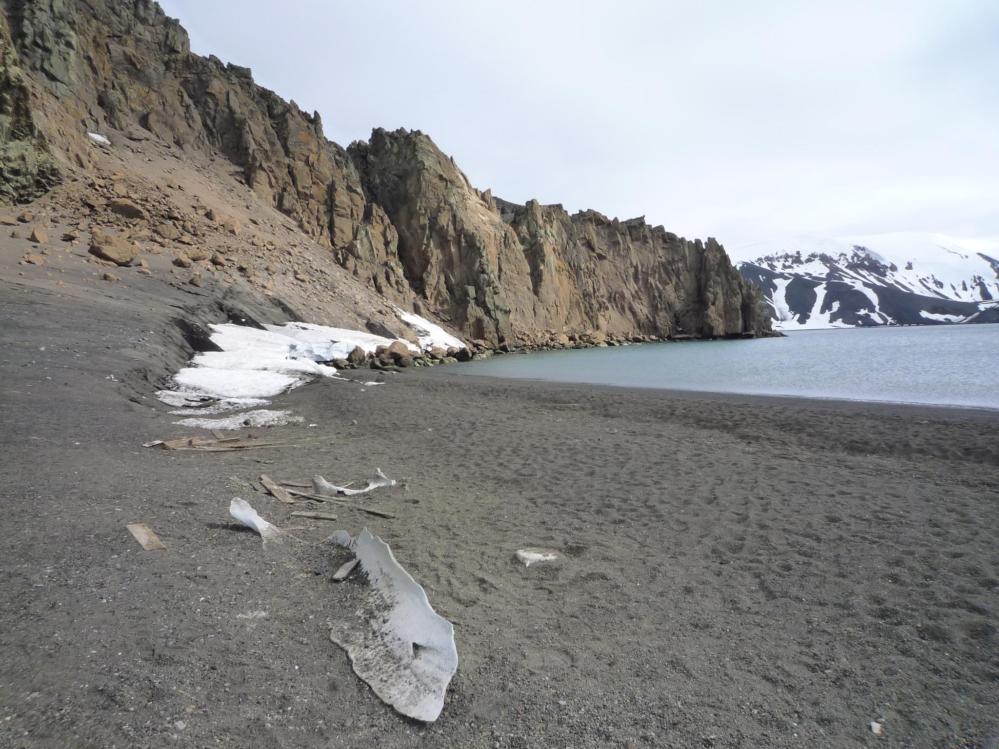 Man blickt nach links an einem Strand in der Antarktis entlang. Es türmen sich kliffartige Felsen auf. Weit im Hintergrund schneebedeckte Berge.