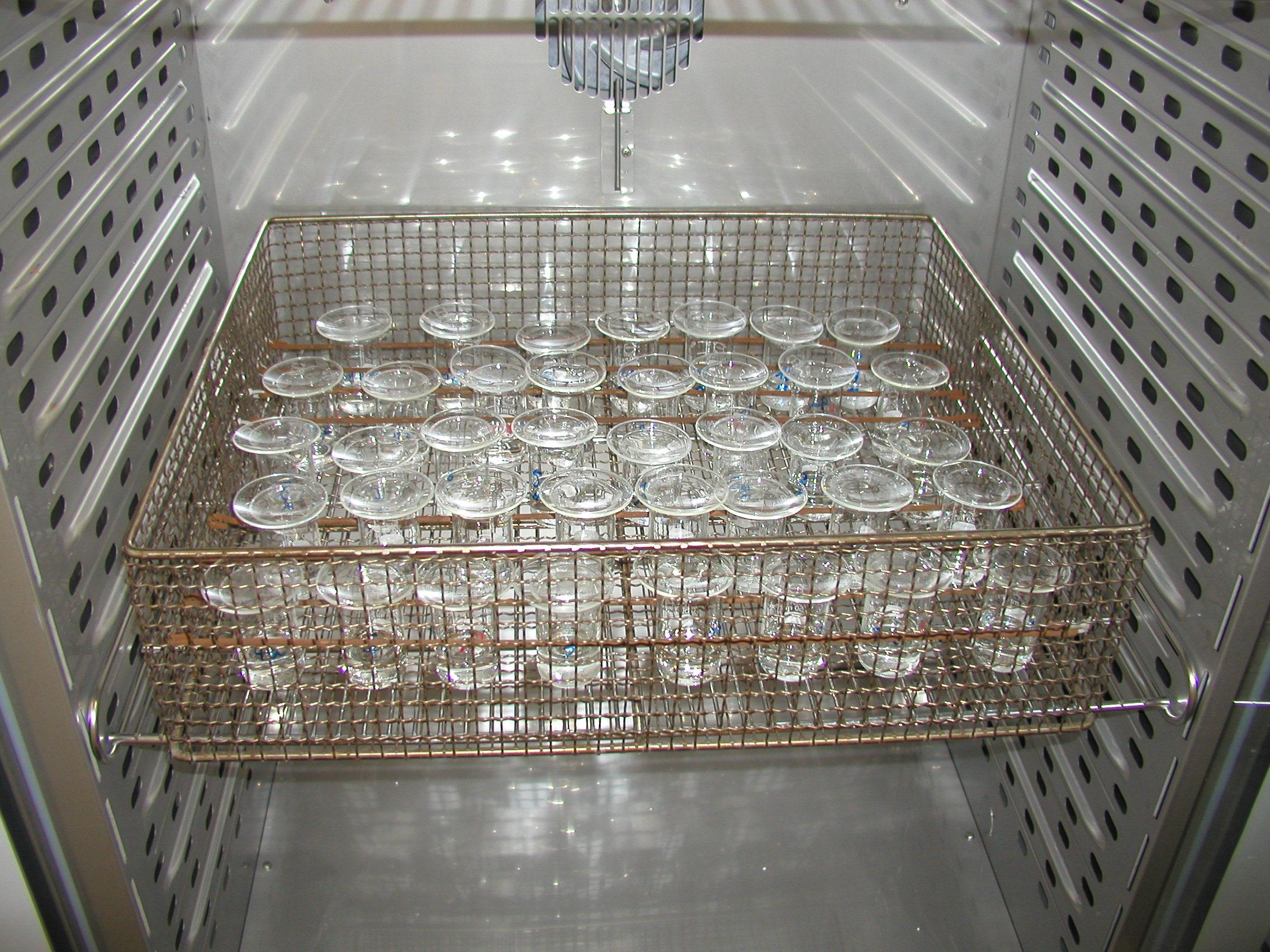 In einem Klimaschrank stehen in einem Einschub Glasgefäße mit Wasserflöhen.