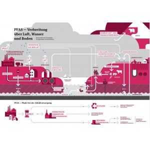 Infografik zur PFAS-Verbreitung