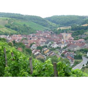 Die Landschaft an der Station Retzstadt