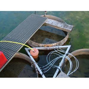 Aufsicht auf Säulensegmente im Wasserbecken.