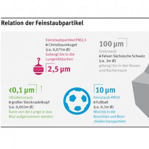 PM2,5 ist in Relation zu anderen Feinstaubpartikeln etwa so groß wie eine Christbaumkugel (ca. 0,075m im Durchmesser). PM10 ist so groß wie ein Fußball (ca. 0,3 m i.D.). Großstaub ist so groß wie ein 3-Meter-Felsen, Ultrafeinstaub wie ein Stecknadelkopf