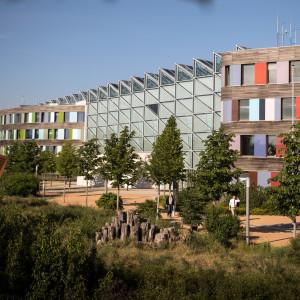 Gebäudeansicht des Umweltbundesamtes vor blauem Himmel. Im Vordergrund stehen Bäume am Wegrand. Die Gebäudefassade ist teilweise verglast und besteht aus Holzelementen farbig durchsetzt.