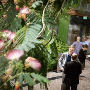 Der Blick geht von schräg oben auf Teilnehmerinnen und Teilnehmer, die sich während der Pause vor dem Eingang zur Workshopraum im Atrium angeregt unterhalten. Die Tür im Hintergrund ist verglast. Im Vordergrund sind die Baumblätter und roten -blüten eines Mimosenbaumes zu sehen.