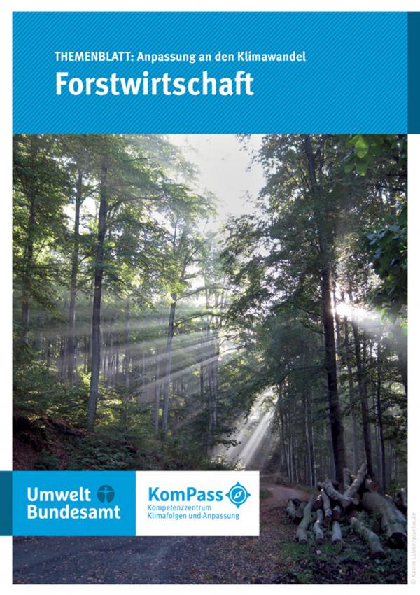 """Cover von """"Anpassung an den Klimawandel: Forstwirtschaft"""" mit einem Foto eines Laubwaldes, durch den Sonnenstrahlen durch die Bäume filtern"""