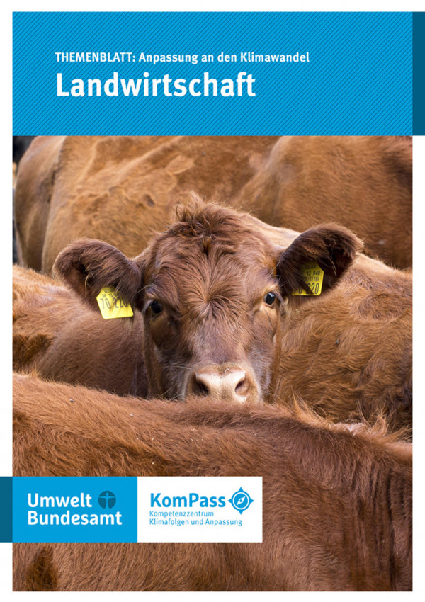 """Cover von """"Anpassung an den Klimawandel: Landwirtschaft""""; Titelfoto: Ein Rind steht zwischen anderen Rinder auf einer Weide"""