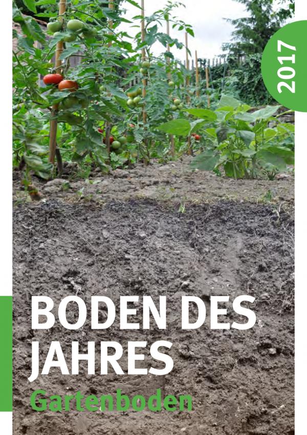 Das Cover zeigt Gartenboden, darüber Tomatenpflanzen