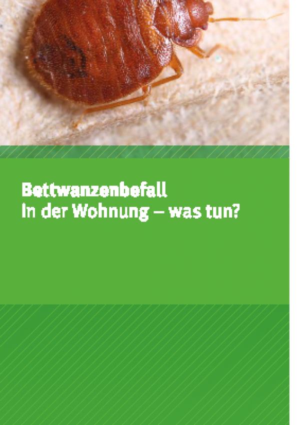 """Cover des Faltblatts """"Bettwanzenbefall in der Wohnung - Was tun?"""" mit einer Silhouette einer Bettwanze"""