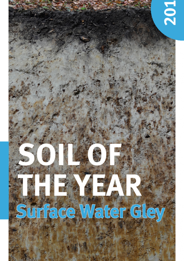 Cover Poster Soil of the year