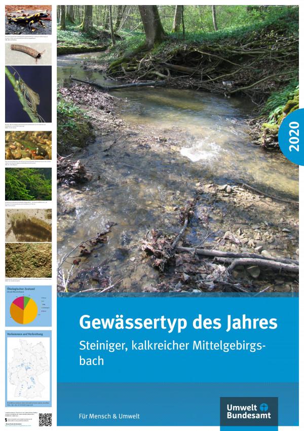 Cover Poster Gewässertyp des Jahres 2020