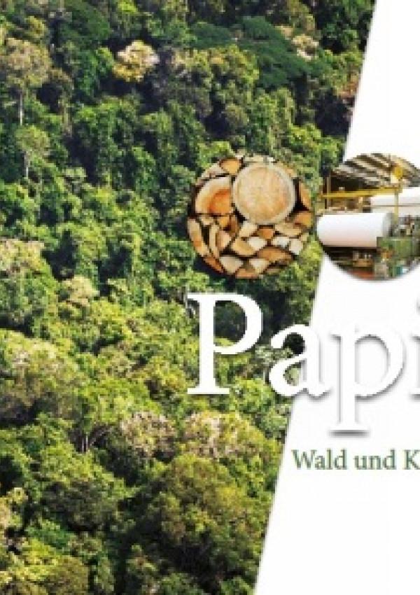 Publikation:Papier. Wald und Klima schützen