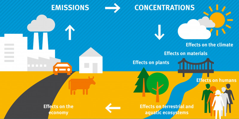 Sources and effects of air pollution