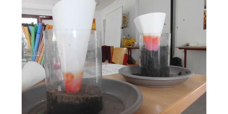 Im Boden kann sich Wasser - entgegen der Schwerkraft - nach oben bewegen!