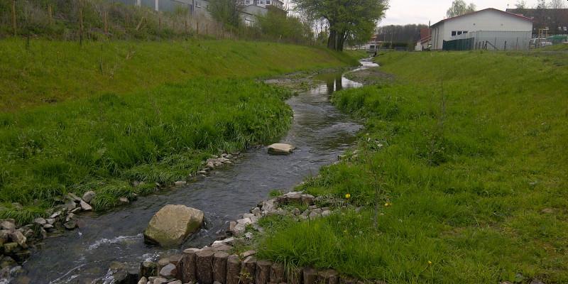 Foto: Renaturierter Heerener Mühlbach mit abgeflachten Ufern. Der Uferverbau ist vollständig entfernt.