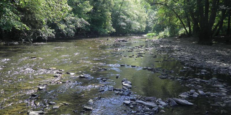 Foto: Ein naturnaher Abschnitt der Ahr im Naturschutzgebiet Ahrschleife bei Altenahr. Grober Schotter prägt das flache Wasser der Ahr. Am Ufer finden sich Kiesbänke und dichte Vegetation.