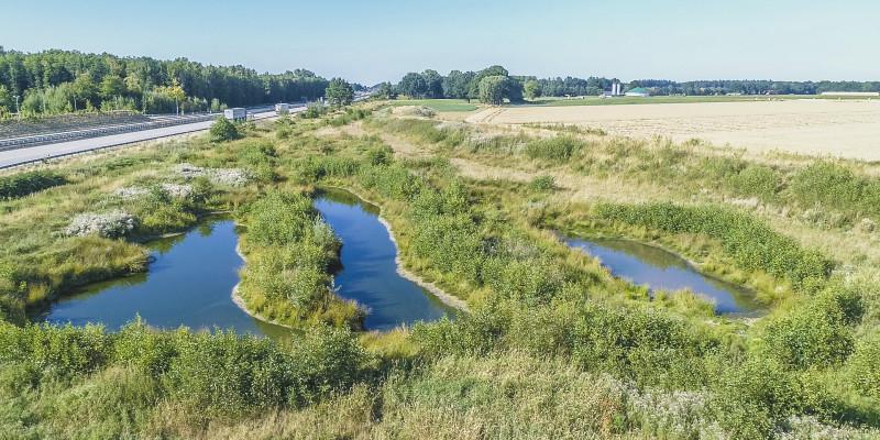 Luftbild eines Abschnitts des Schierenbaches zwischen der Autobahn A1 und landwirtschaftlichen Flächen. Mehrere Stillgewässer liegen im Umfeld des Baches. Die Umgebung ist mit hohen Gräsern und Büschen bewachsen.