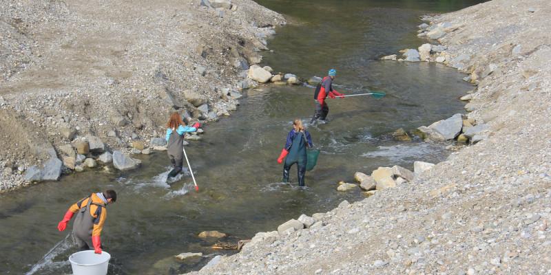 Foto: Der Fischpass Feldkirchen am Inn wird durch von vier Personen hinsichtlich der Fischpopulationen genauer untersucht.