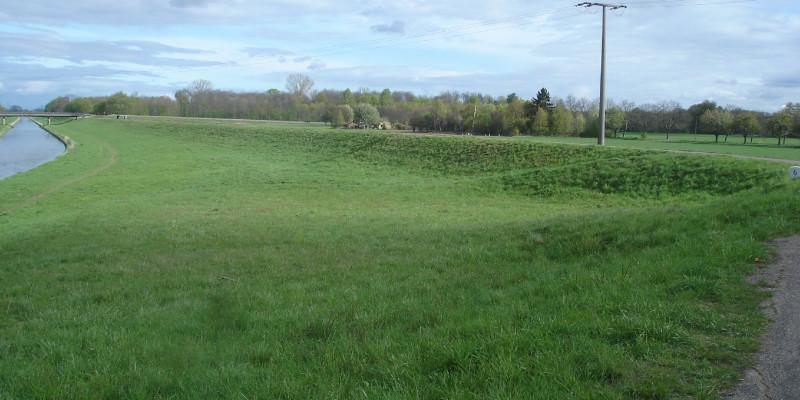 Foto: Eingedeichtes Vorland der Murg. Am linken Bildrand ist die verbaute, geradlinige Murg zu sehen.