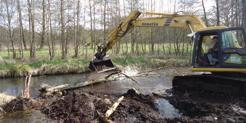 The river Nebel during the restoration work. An excavator places a tree trunk into the water. On the opposite bank, trees and shrubs form a riparian vegetation strip.