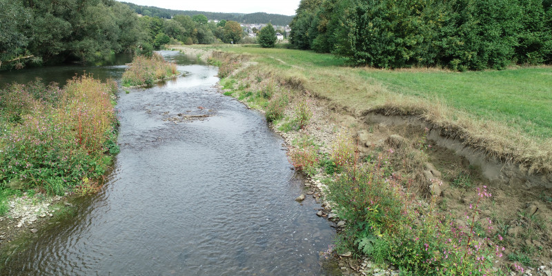 Foto: Ein naturnahes Ufer mit Ufererosion an der renaturierten Ruhr bei Oeventrop