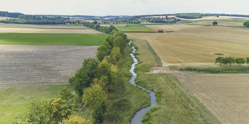 Luftbild der Wern, die schwach geschwungen in einem Entwicklungskorridor verläuft. Ein Ufer ist mit dichten Gehölzen bewachsen. Entlang des gegenüberliegenden Ufers wachsen Gräser. An den Entwicklungskorridor grenzen landwirtschaftliche Flächen an.
