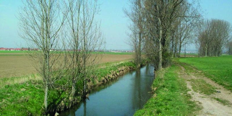 Foto: Die Wern als monotones Gerinne mit vereinzelten Ufergehölzen und Ackerflächen, die bis nah an die Gewässerkante reichen.