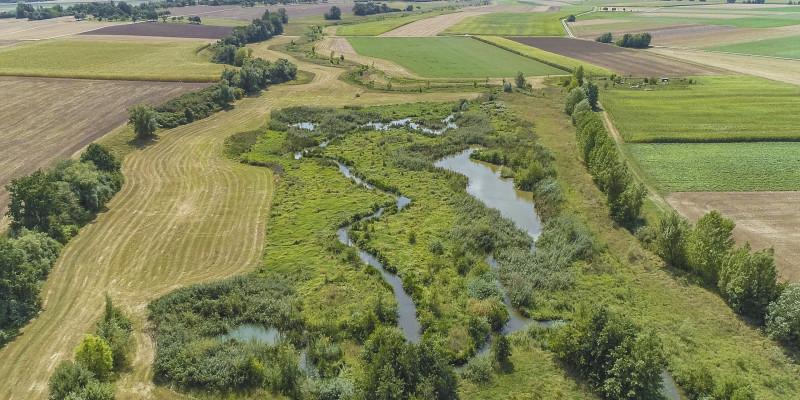 Luftbild der renaturierten Wern umgeben von Grünland- und Ackerflächen. Entlang der Renaturierungsstrecke hat sich eine naturnahe Vegetation aus Gehölzen, Gräsern und Büschen entwickelt.