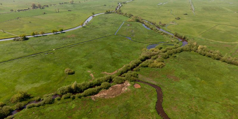 Luftbild des nassen Dreiecks an der Wümme mit Sträuchern und Bäumen im Uferbereich und umgebenden wiedervernässten Feuchtwiesen.