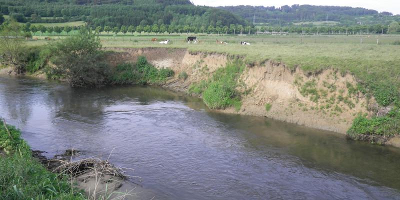 Foto: Ein Fluss mit starker Eintiefung. Im Hintergrund sind landwirtschaftlich genutzte Flächen zu sehen, die bis an den Gewässerrand reichen.
