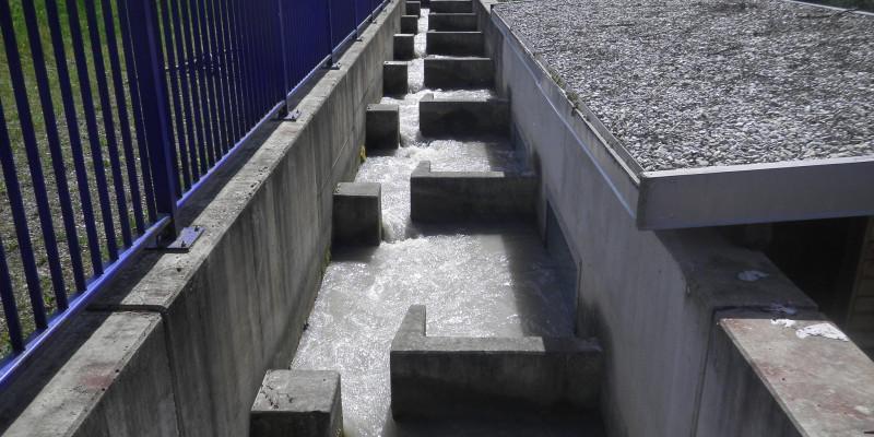 Foto: Eine technische Wanderhilfe aus Beton mit strömungsberuhigten Zonen für den Aufstieg und Abstieg von Lebewesen.