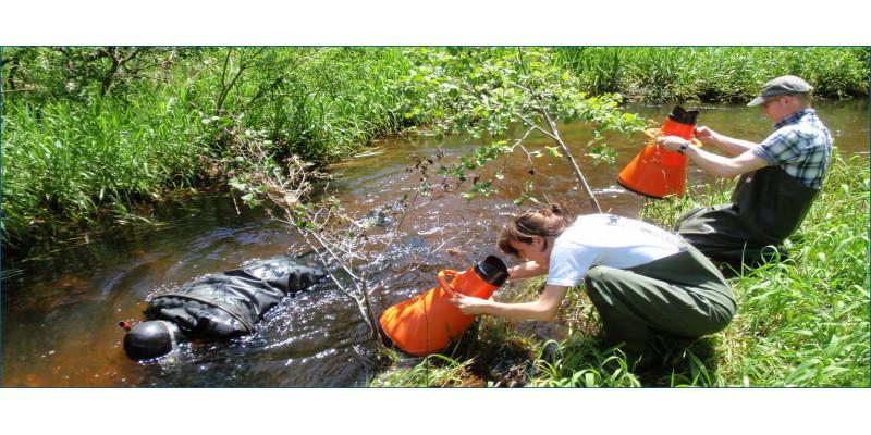 Foto: Ein Taucher und zwei Personen mit speziellen Sichtröhren untersuchen die Sohle eines Baches.