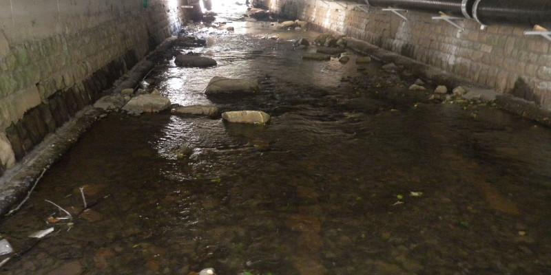 Foto: Ein Gewässerdurchlass mit offener, strukturreicher Sohle. In der Mitte des Durchlasses scheint Licht durch einen Schacht auf das Gewässer.