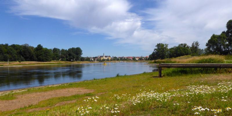 Die Elbe bei Coswig